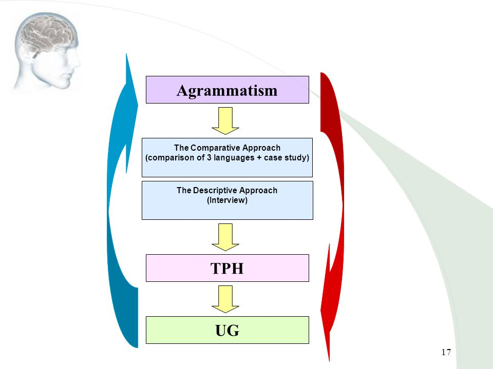 17 The Comparative Approach (comparison of 3 languages + case study) Agrammatism TPH The Descriptive Approach (Interview) UG