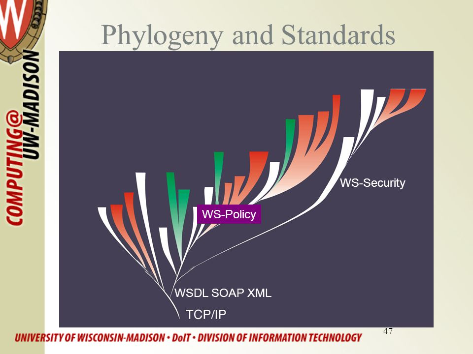 47 Phylogeny and Standards http://genetics.nbii.gov/systematics.html WSDL SOAP XML WS-Security WS-Policy
