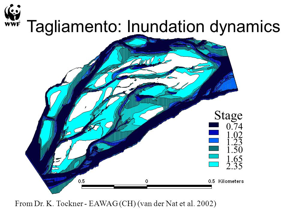 0.74 1.02 1.23 1.50 1.65 2.35 Stage Tagliamento: Inundation dynamics From Dr.