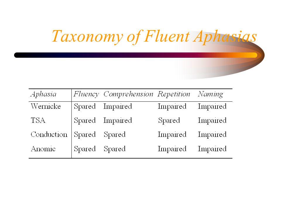 Taxonomy of Fluent Aphasias