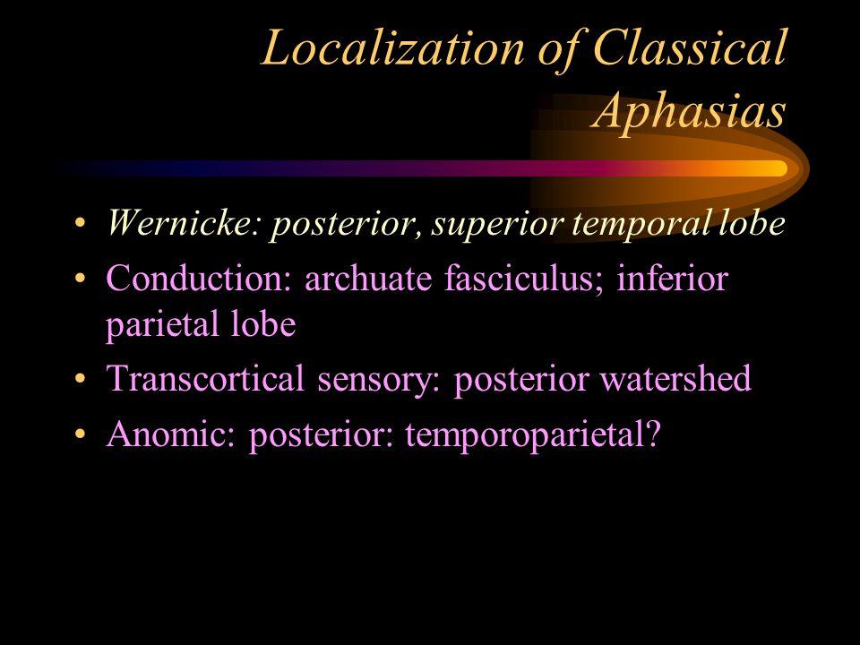 Localization of Classical Aphasias Wernicke: posterior, superior temporal lobe Conduction: archuate fasciculus; inferior parietal lobe Transcortical s