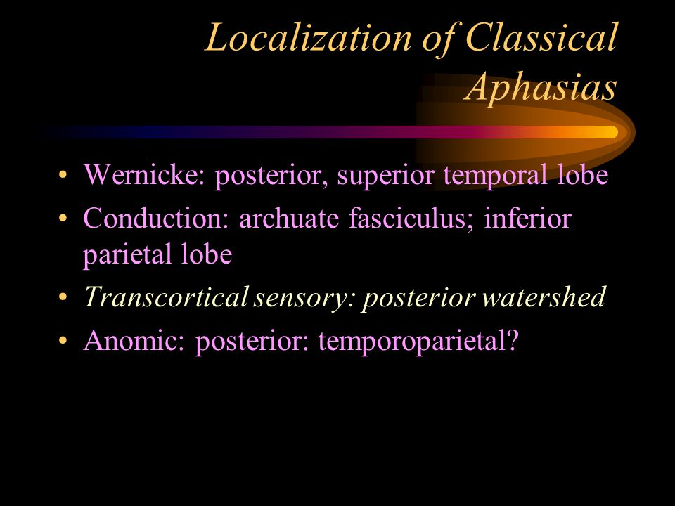 Localization of Classical Aphasias Wernicke: posterior, superior temporal lobe Conduction: archuate fasciculus; inferior parietal lobe Transcortical sensory: posterior watershed Anomic: posterior: temporoparietal?