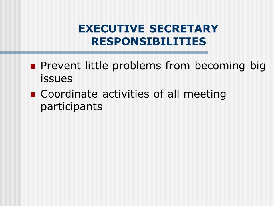 EXECUTIVE SECRETARY RESPONSIBILITIES Prevent little problems from becoming big issues Coordinate activities of all meeting participants