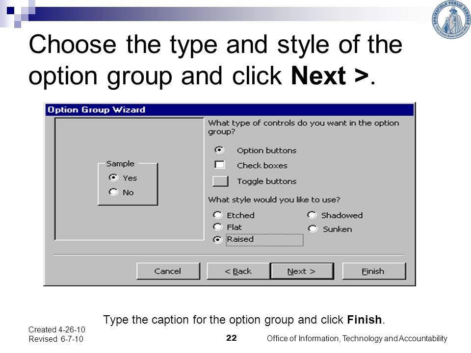 Choose the type and style of the option group and click Next >.