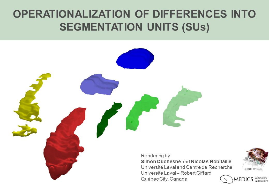 OPERATIONALIZATION OF DIFFERENCES INTO SEGMENTATION UNITS (SUs) Rendering by Simon Duchesne and Nicolas Robitaille Université Laval and Centre de Recherche Université Laval – Robert Giffard Québec City, Canada