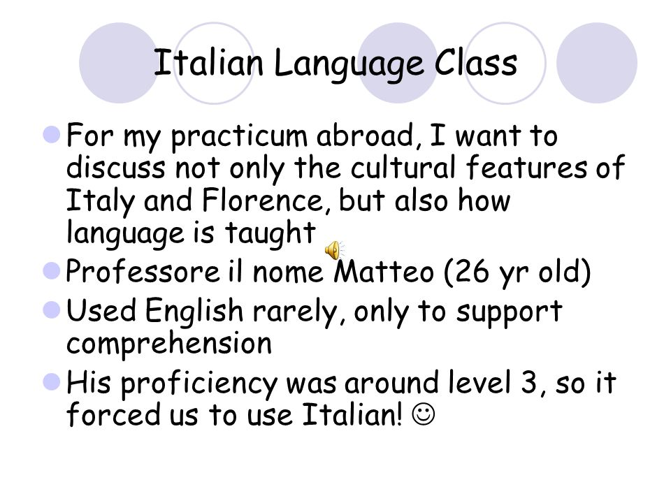 Teaching Styles Courses were taught in English with the exception of Beginning Italian With the exception of Italian, all courses were taught by direct instruction or lecture style All classes were taught by native Italian instructors with the exception of Political Theory and Philosophy.