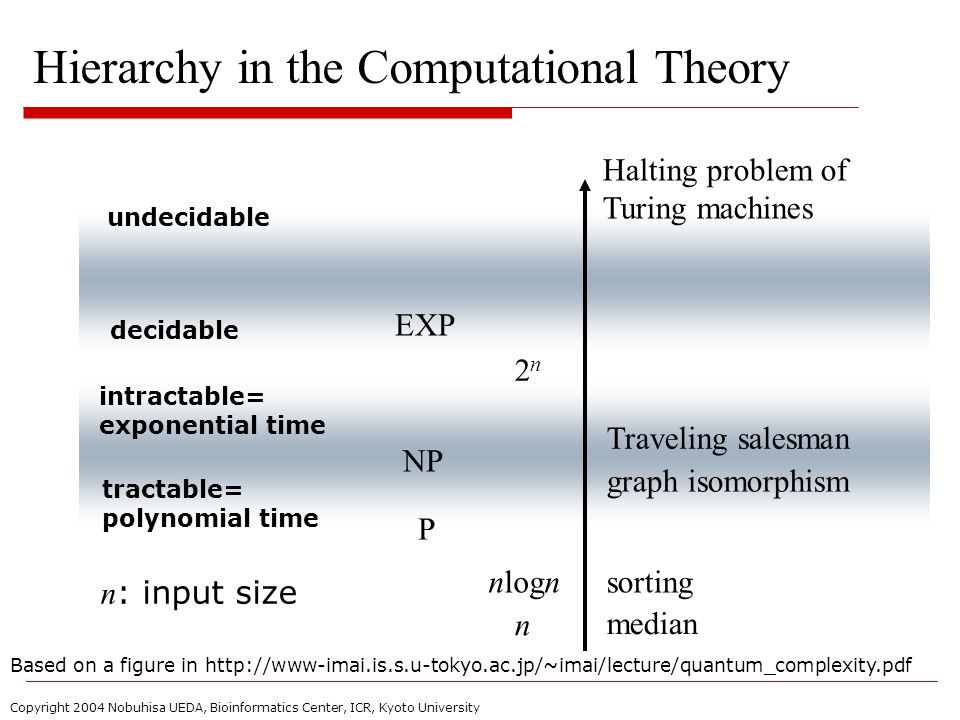 Copyright 2004 Nobuhisa UEDA, Bioinformatics Center, ICR, Kyoto University Hierarchy in the Computational Theory undecidable decidable intractable= exponential time tractable= polynomial time n : input size n nlogn graph isomorphism Traveling salesman Halting problem of Turing machines sorting median 2n2n Based on a figure in http://www-imai.is.s.u-tokyo.ac.jp/~imai/lecture/quantum_complexity.pdf P EXP NP