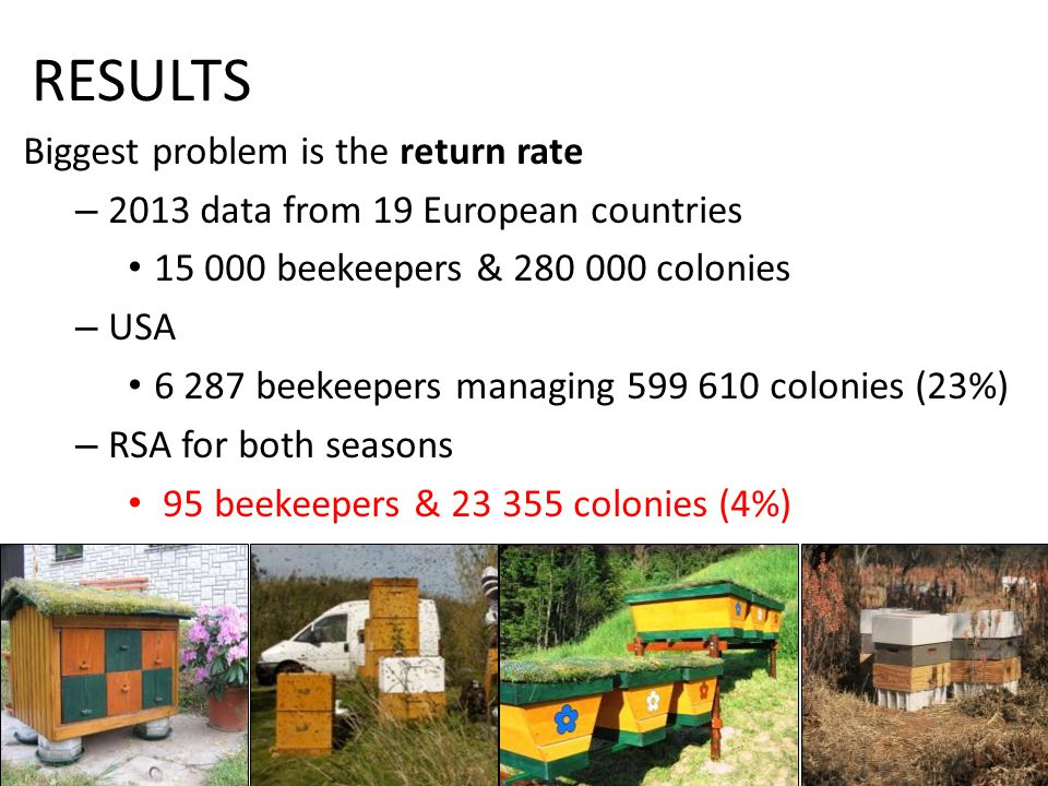 RESULTS Biggest problem is the return rate – 2013 data from 19 European countries 15 000 beekeepers & 280 000 colonies – USA 6 287 beekeepers managing