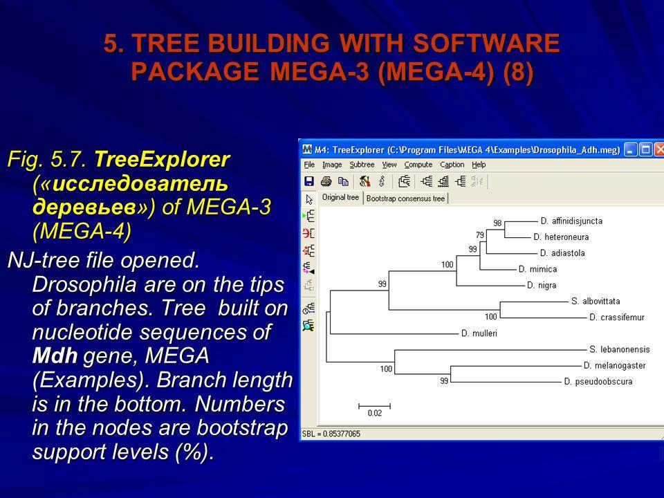 5. TREE BUILDING WITH SOFTWARE PACKAGE MEGA-3 (MEGA-4) (8) Fig.