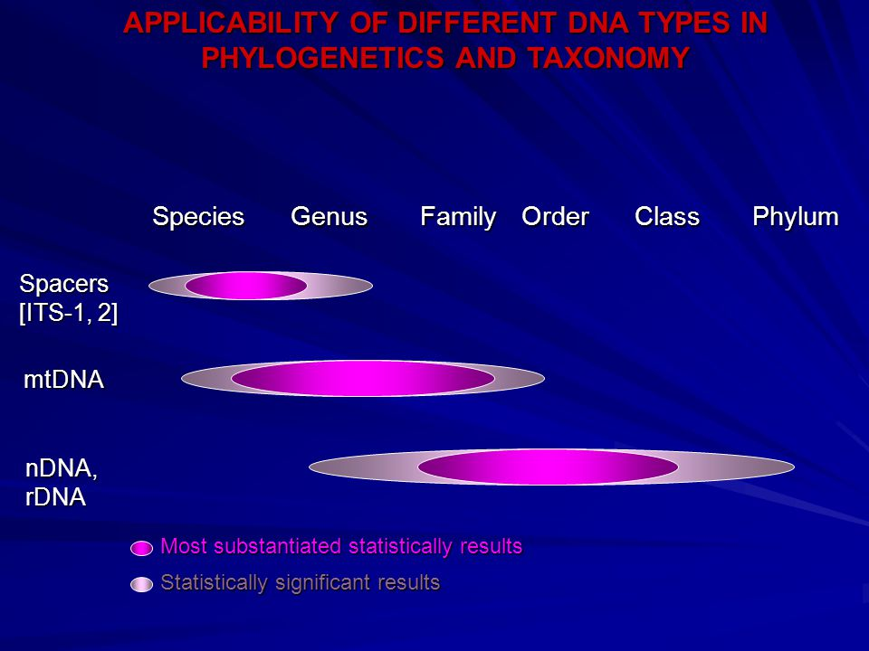 nDNA, nDNA, rDNA rDNA Most substantiated statistically results Most substantiated statistically results Statistically significant results Statistically significant results APPLICABILITY OF DIFFERENT DNA TYPES IN PHYLOGENETICS AND TAXONOMY Species Genus Family Order Class Phylum Spacers [ITS-1, 2] mtDNA mtDNA