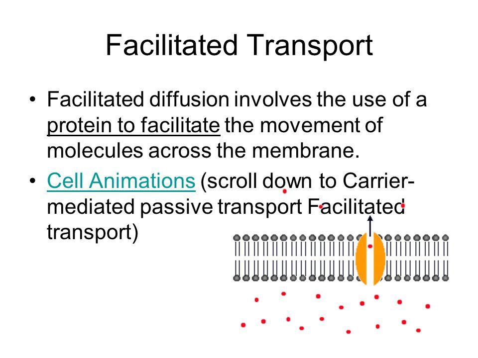 Facilitated Transport Facilitated diffusion involves the use of a protein to facilitate the movement of molecules across the membrane.
