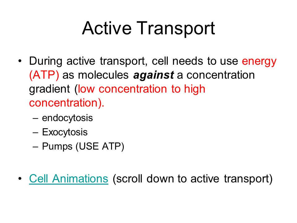 Active Transport During active transport, cell needs to use energy (ATP) as molecules against a concentration gradient (low concentration to high concentration).