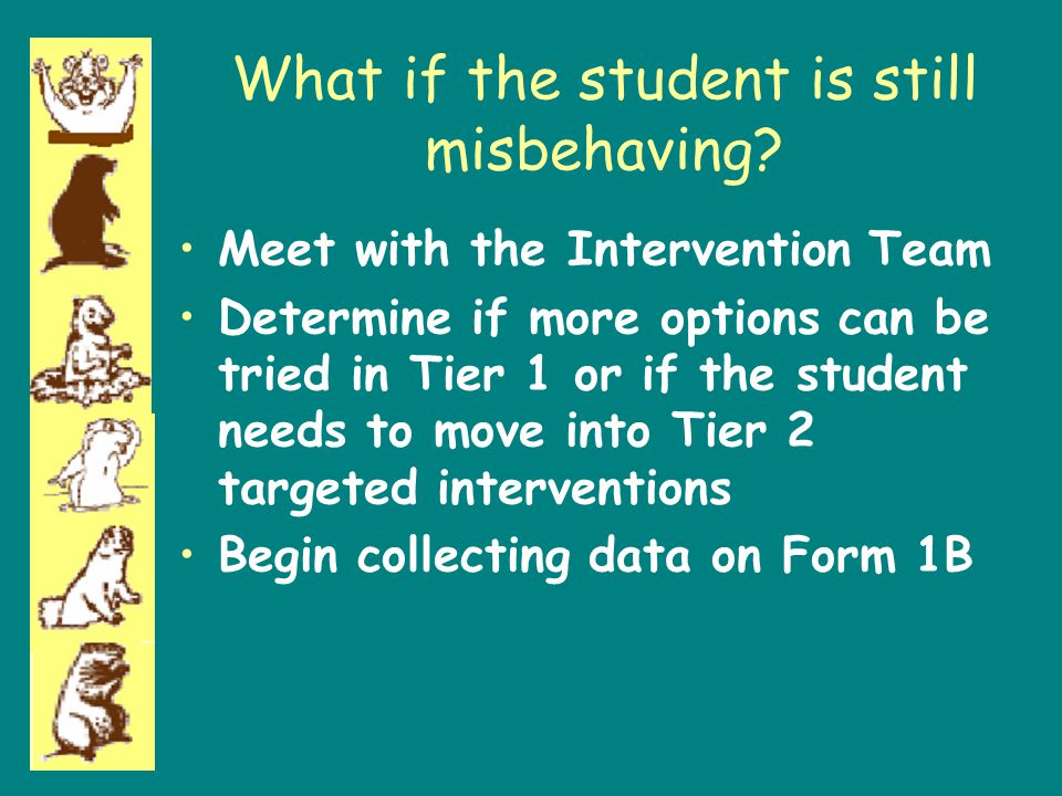 What if the student is still misbehaving? Meet with the Intervention Team Determine if more options can be tried in Tier 1 or if the student needs to