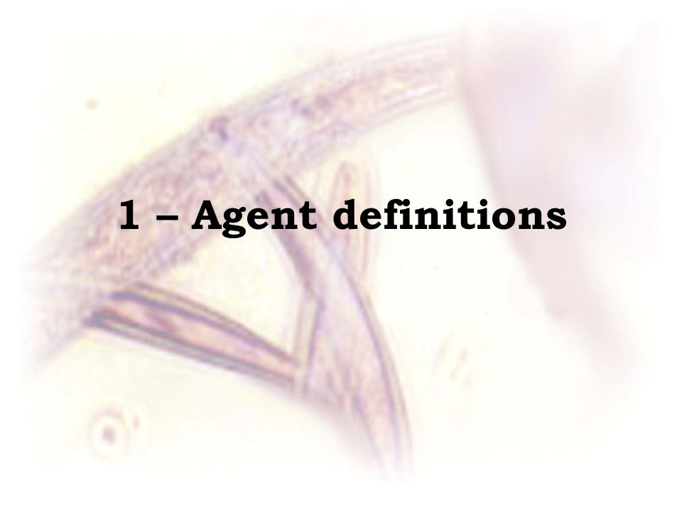 1 – Agent definitions
