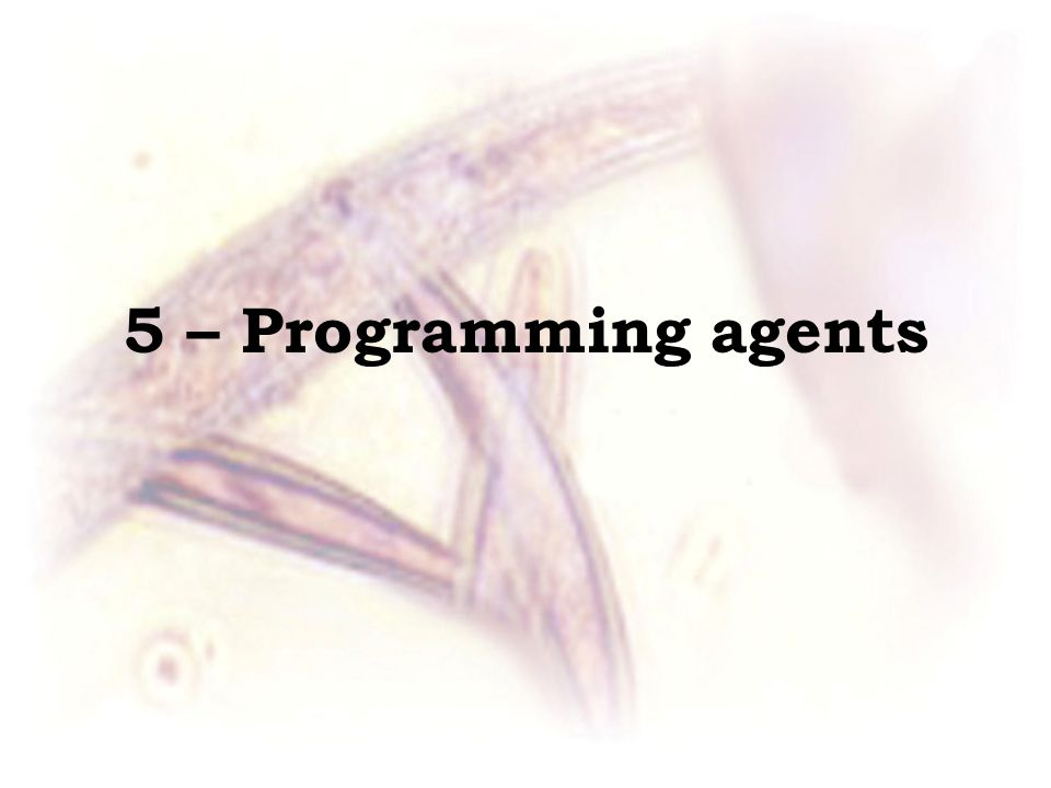 5 – Programming agents