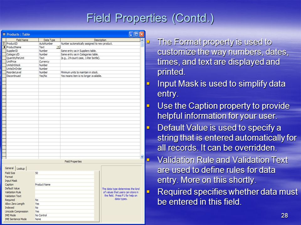 28 Field Properties (Contd.)  The Format property is used to customize the way numbers, dates, times, and text are displayed and printed.  Input Mas