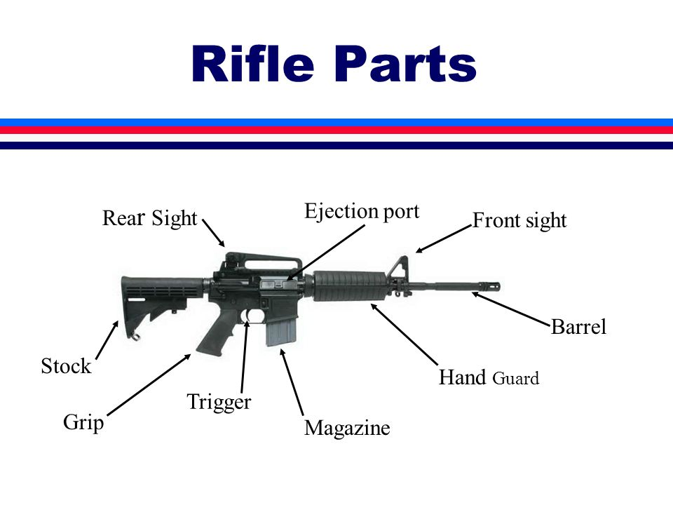 Rifle Parts Stock Trigger Front sight Ejection port Hand Guard Rea r Sight Magazine Grip Barrel