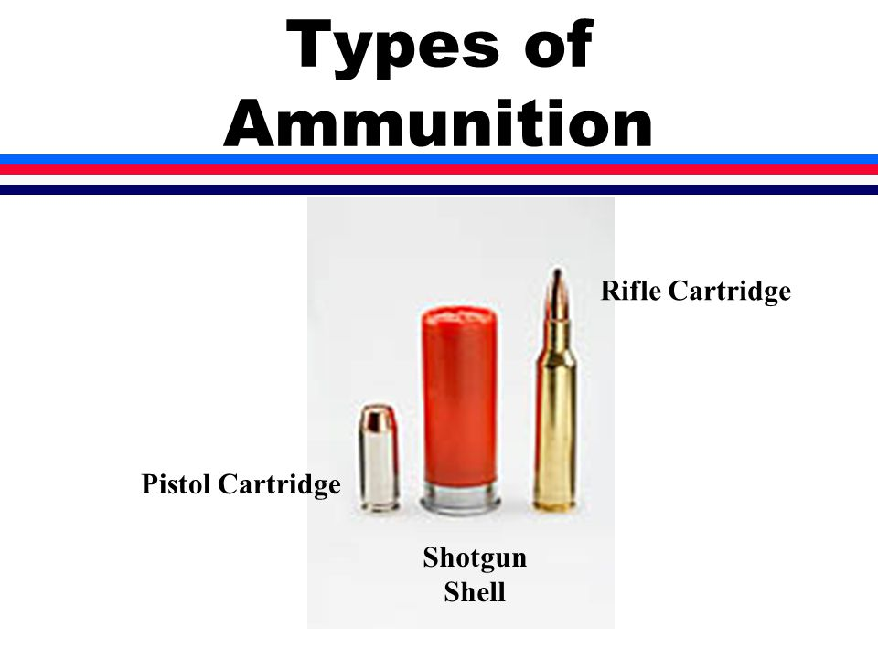 Types of Ammunition Rifle Cartridge Pistol Cartridge Shotgun Shell