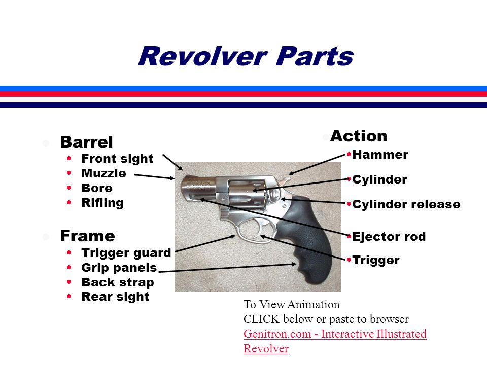 Revolver Parts l Barrel Front sight Muzzle Bore Rifling l Frame Trigger guard Grip panels Back strap Rear sight l Action Hammer Cylinder Cylinder release Ejector rod Trigger To View Animation CLICK below or paste to browser Genitron.com - Interactive Illustrated Revolver
