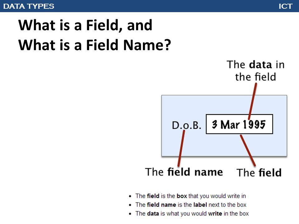 What is a Field, and What is a Field Name?