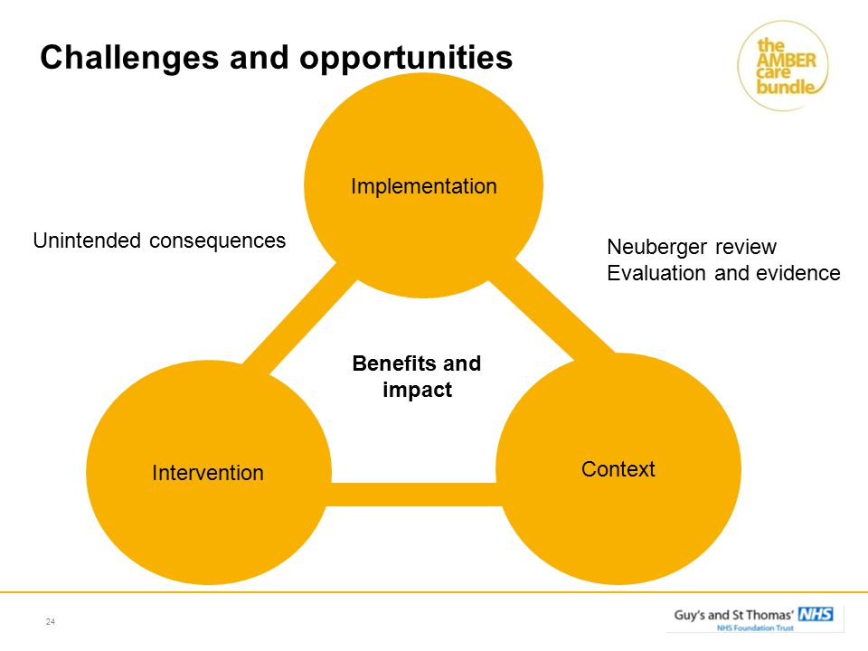 24 Context Intervention Implementation Benefits and impact Unintended consequences Challenges and opportunities Neuberger review Evaluation and evidence
