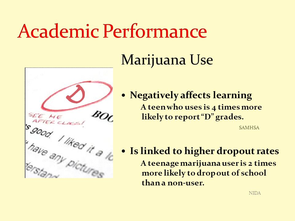 "Marijuana Use Negatively affects learning A teen who uses is 4 times more likely to report ""D"" grades. SAMHSA Is linked to higher dropout rates A teen"