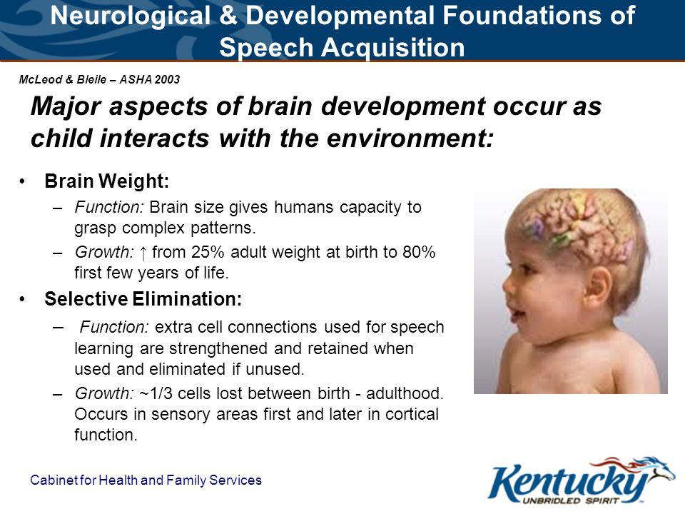 Cabinet for Health and Family Services TO DEVELOP LANGUAGE IN INFANTS – BEGIN WITH THE BRAIN