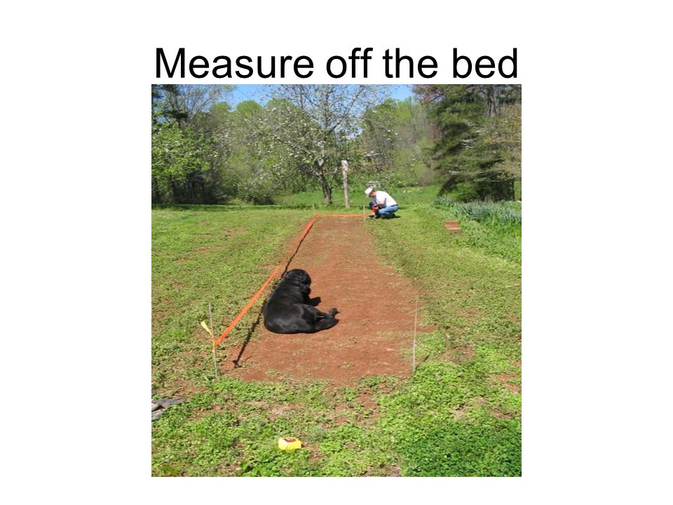 Measure off the bed