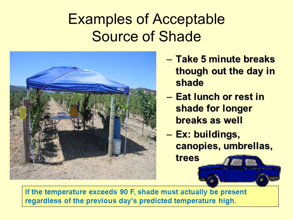 Is this adequate shade. The nearest shaded area must be as close as practicable.