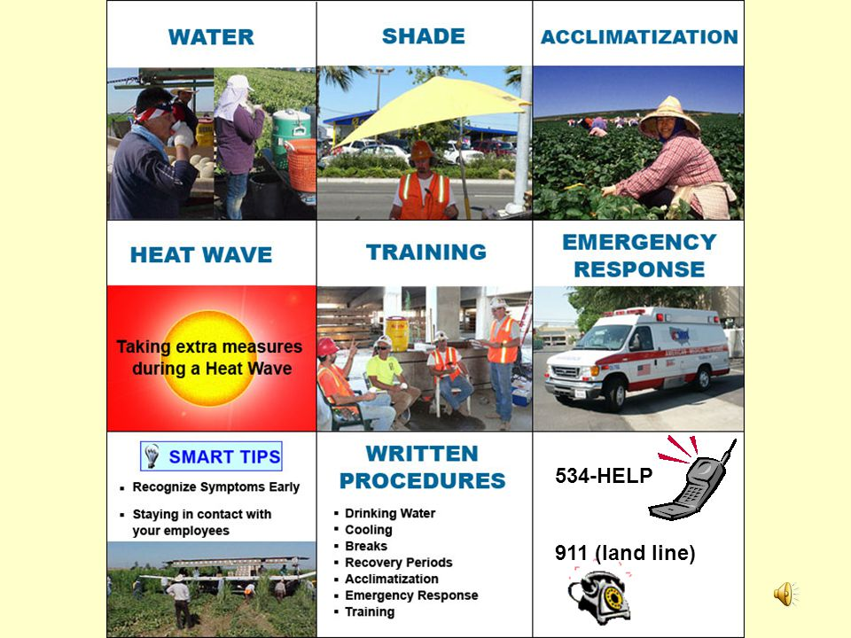 In Review: Planning Procedures Weather monitoring- heat wave Acclimization Water Shade Training Recognizing heat illness symptoms Contacting emergency medical services Providing clear and precise directions