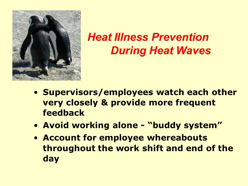 Heat Illness Prevention During Heat Waves Take Extra Measures - More Water  Drink water more frequently before, during and after work  Water must be