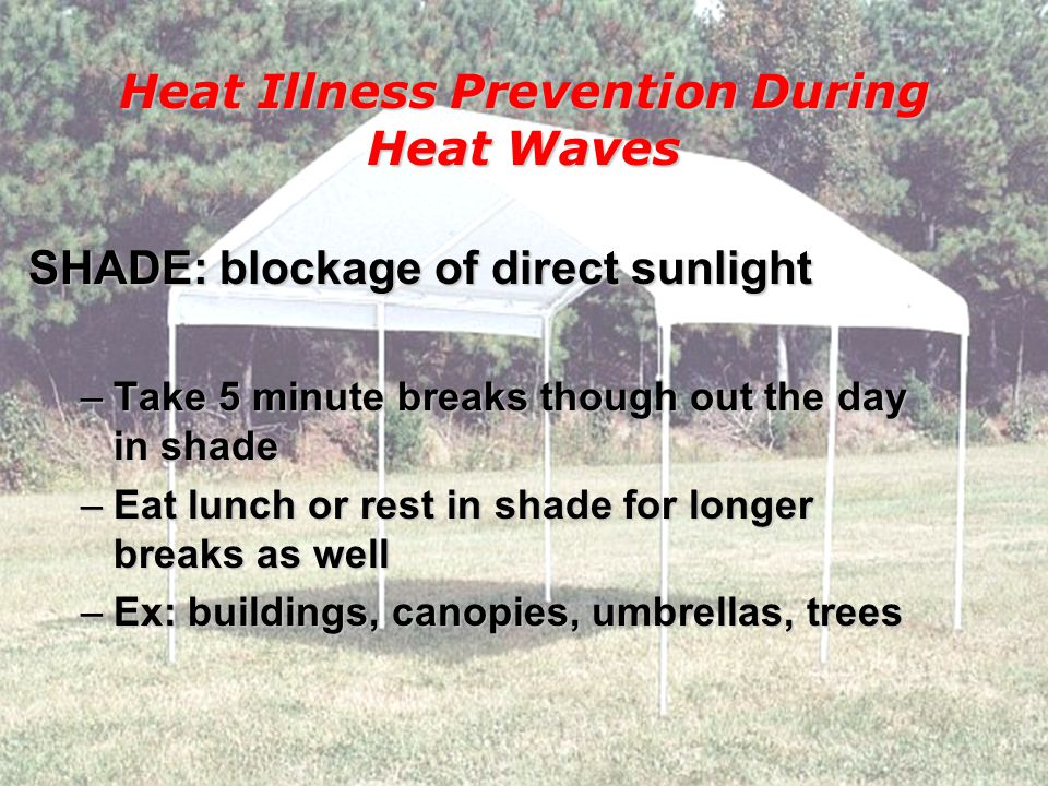 Supervisors/employees watch each other very closely & provide more frequent feedback Avoid working alone - buddy system Account for employee whereabouts throughout the work shift and end of the day Heat Illness Prevention During Heat Waves