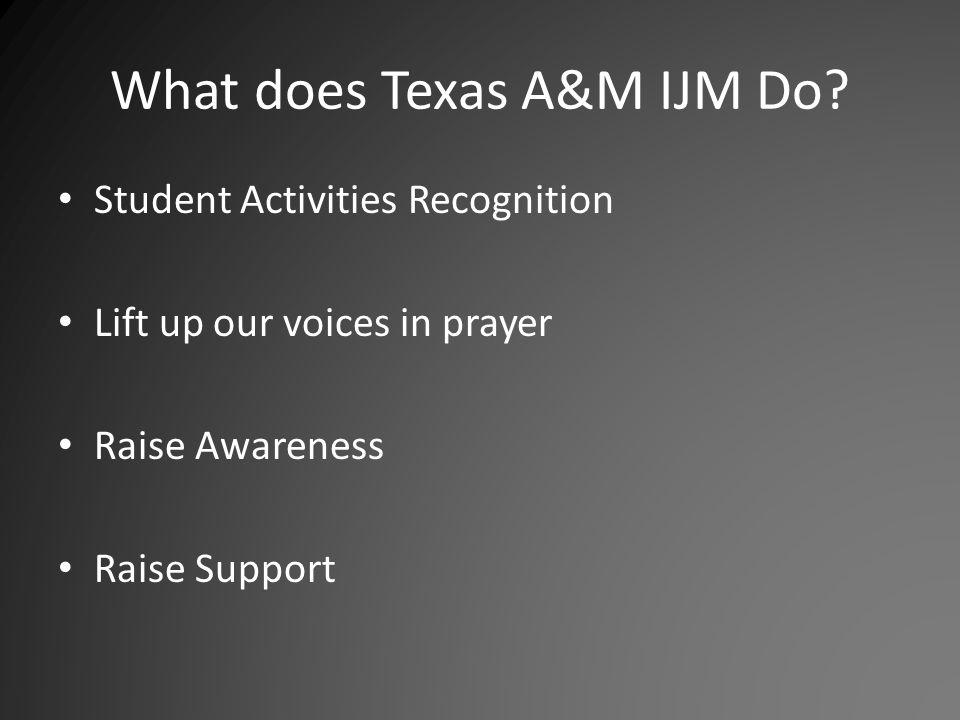 What does Texas A&M IJM Do.