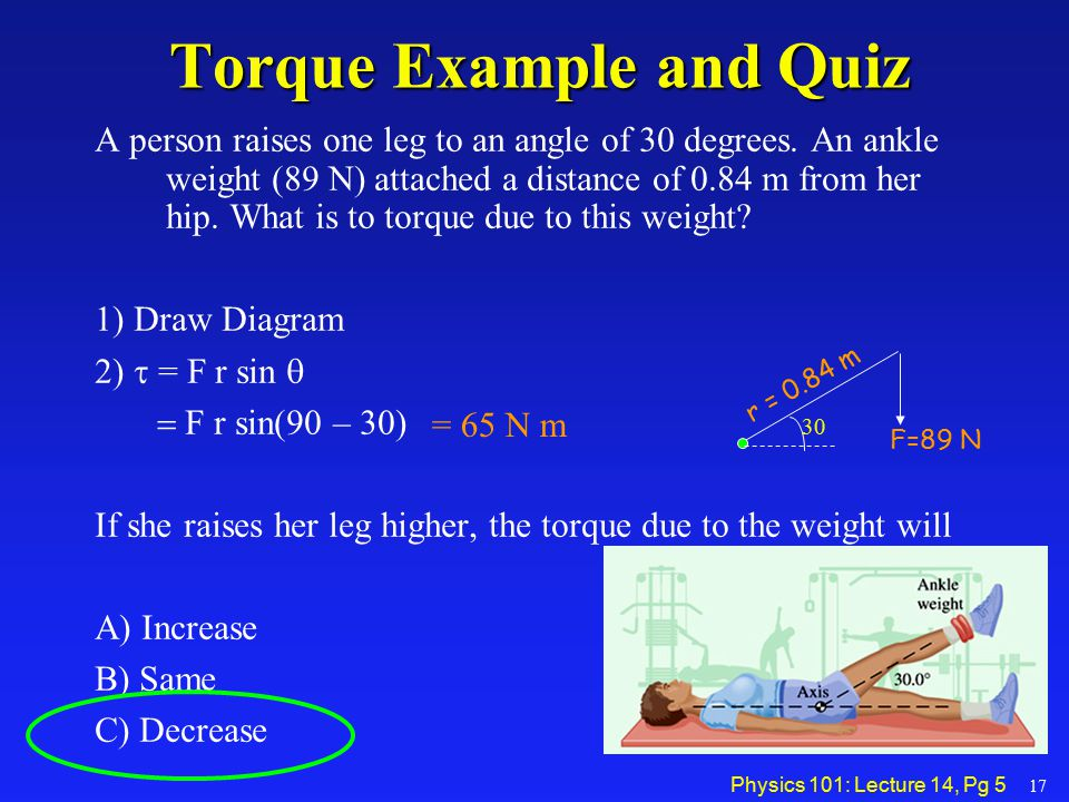 Physics 101: Lecture 14, Pg 5 Torque Example and Quiz A person raises one leg to an angle of 30 degrees. An ankle weight (89 N) attached a distance of