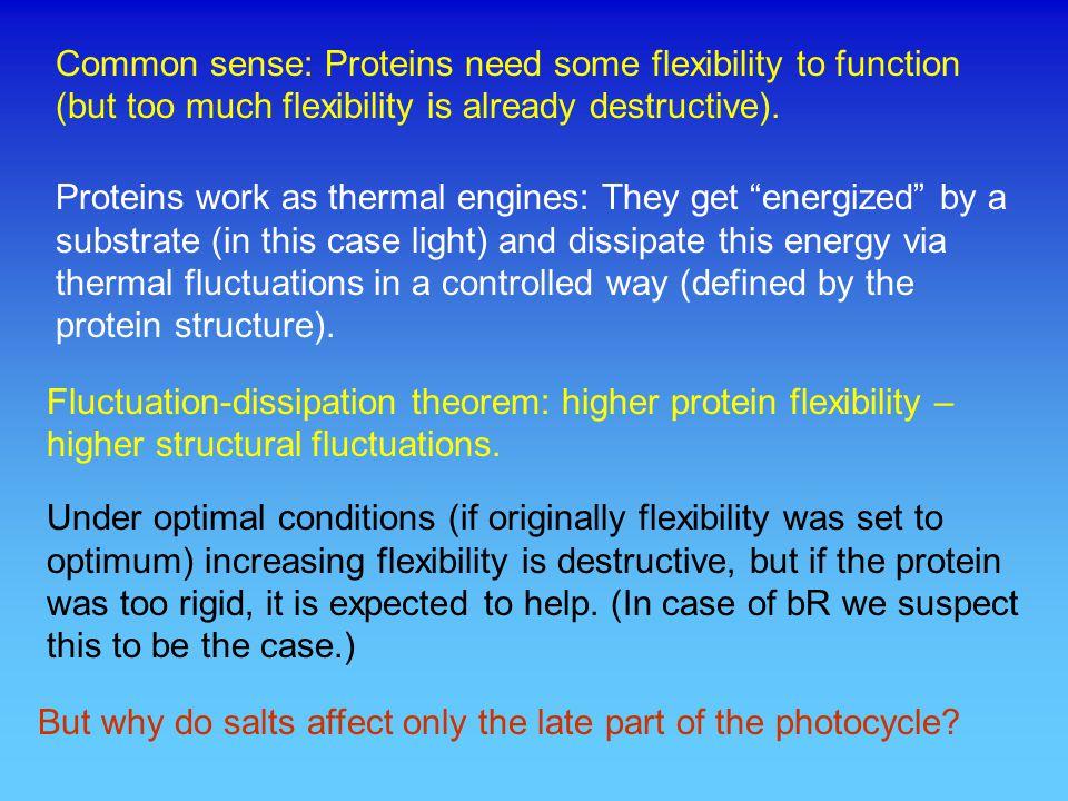 Summary of the proton transport steps Balashov, BBA 1460, 75-94, 2000 cytoplasmic side extracellular side A B C D E F G 1 2 3 4 5