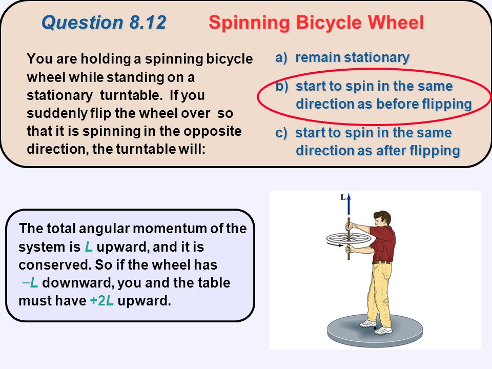 Question 8.12 Spinning Bicycle Wheel You are holding a spinning bicycle wheel while standing on a stationary turntable. If you suddenly flip the wheel