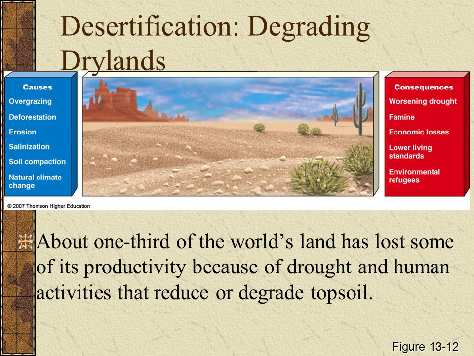 Desertification: Degrading Drylands About one-third of the world's land has lost some of its productivity because of drought and human activities that reduce or degrade topsoil.