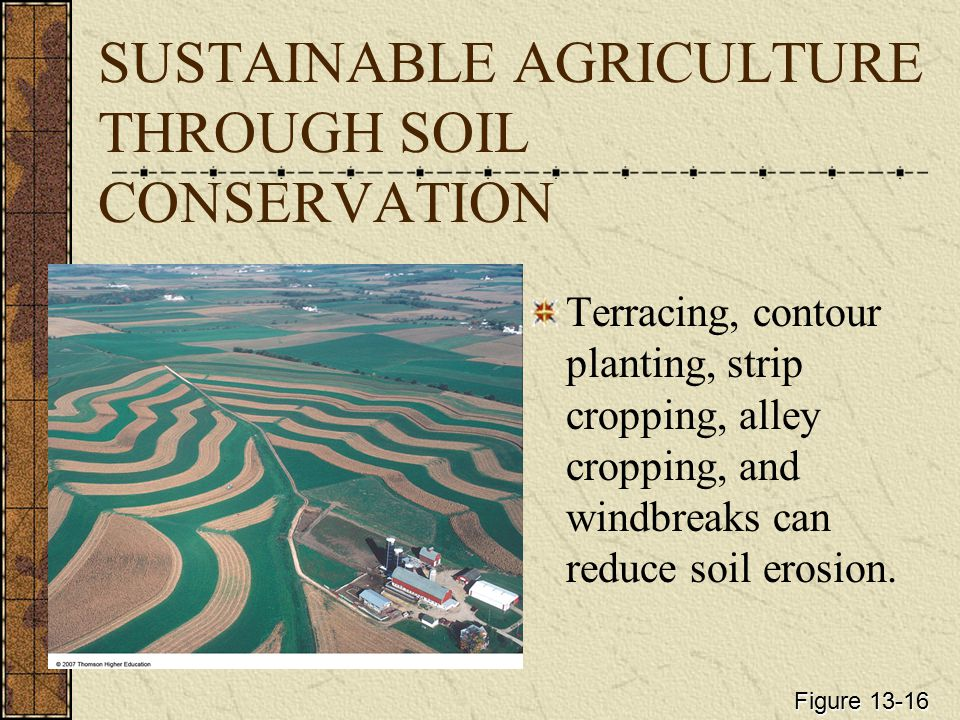 SUSTAINABLE AGRICULTURE THROUGH SOIL CONSERVATION Terracing, contour planting, strip cropping, alley cropping, and windbreaks can reduce soil erosion.