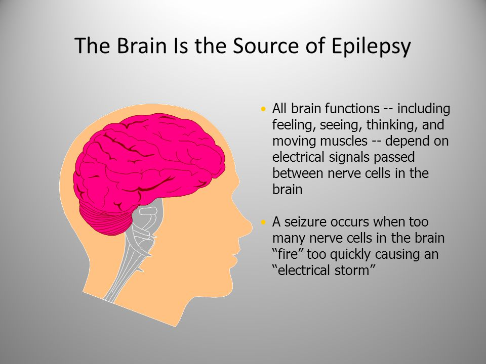 A Resource Guide for California Parents Section 2 Bill Stack Associate Director Epilepsy Foundation Northern California