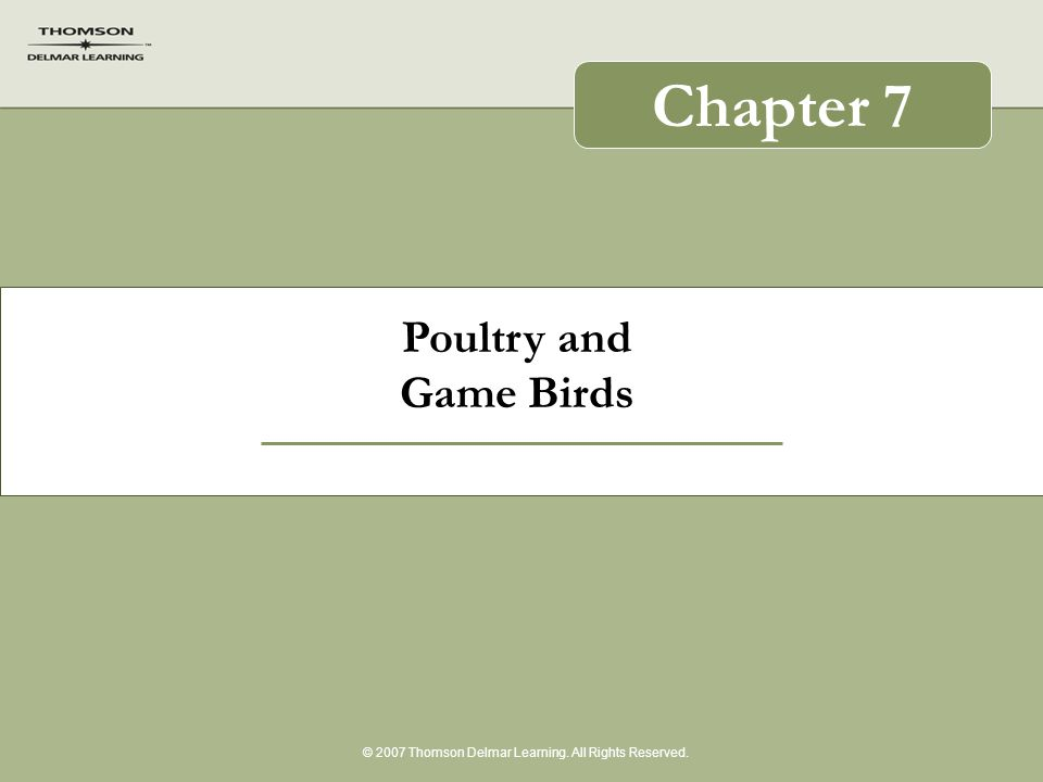 Poultry and Game Birds © 2007 Thomson Delmar Learning. All Rights Reserved. Chapter 7