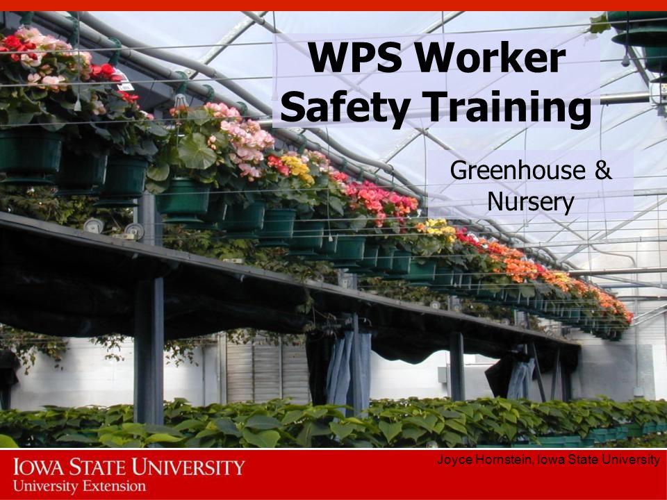 WPS Worker Safety Training Joyce Hornstein, Iowa State University Greenhouse & Nursery