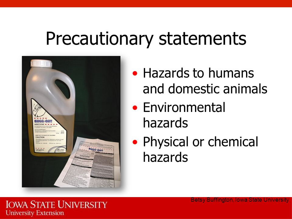Precautionary statements Hazards to humans and domestic animals Environmental hazards Physical or chemical hazards Betsy Buffington, Iowa State University