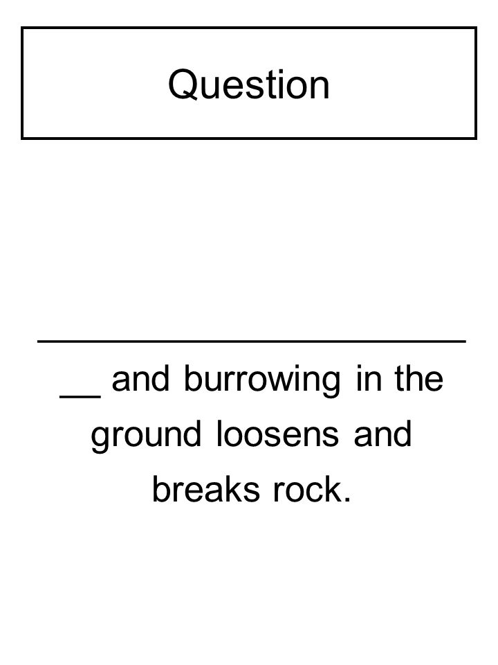 Question _____________________ __ and burrowing in the ground loosens and breaks rock.