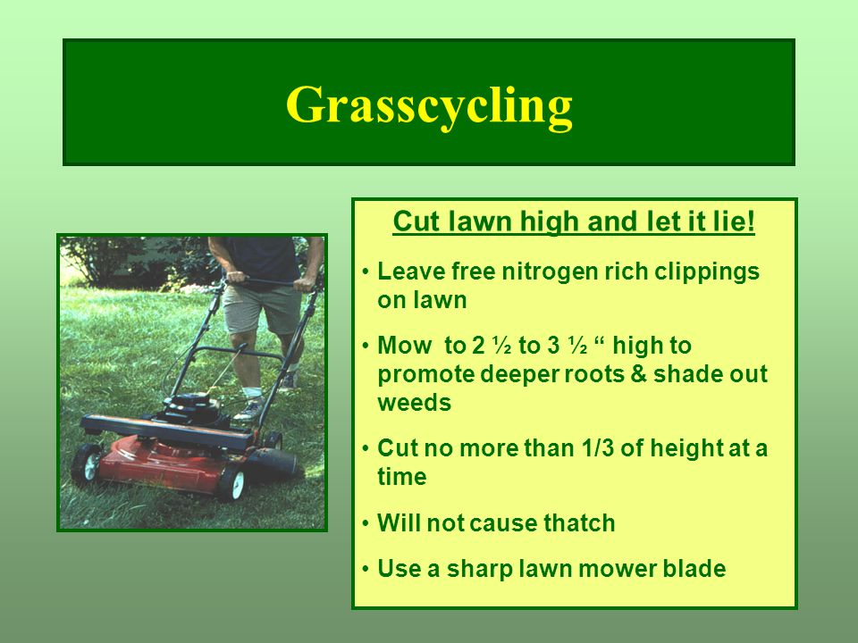 """Grasscycling Cut lawn high and let it lie! Leave free nitrogen rich clippings on lawn Mow to 2 ½ to 3 ½ """" high to promote deeper roots & shade out wee"""