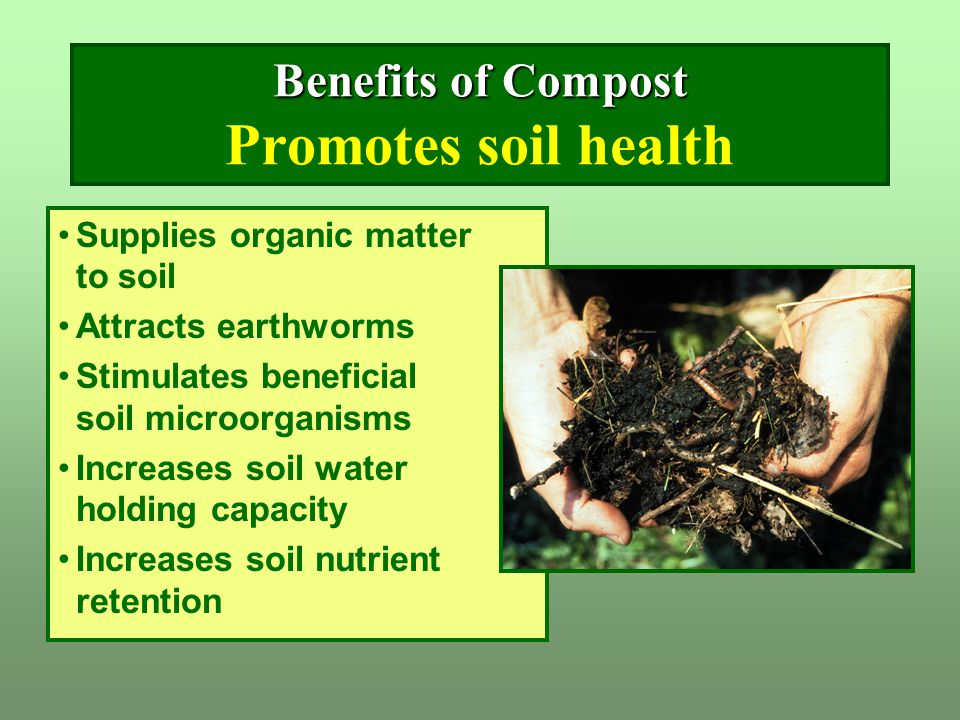Benefits of Compost Benefits of Compost Promotes soil health Supplies organic matter to soil Attracts earthworms Stimulates beneficial soil microorgan