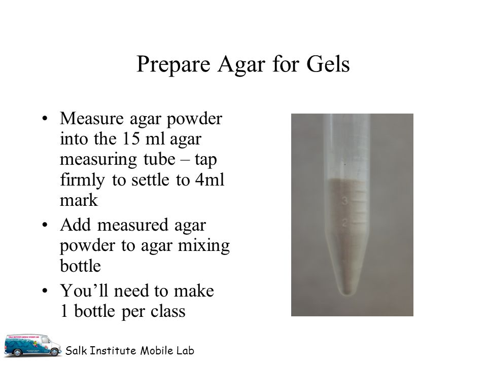 Salk Institute Mobile Lab Measure agar powder into the 15 ml agar measuring tube – tap firmly to settle to 4ml mark Add measured agar powder to agar mixing bottle You'll need to make 1 bottle per class Prepare Agar for Gels