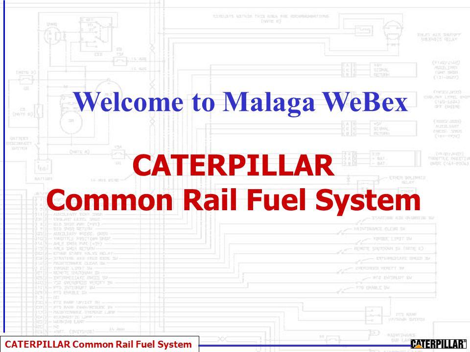 CATERPILLAR Common Rail Fuel System CATERPILLAR Common Rail Fuel System Welcome to Malaga WeBex