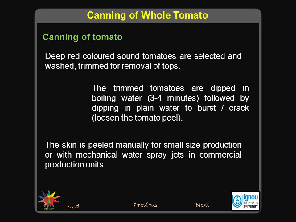 Canning of tomato Next End Canning of Whole Tomato Previous Peeled tomatoes either whole or cut are filled in the sterilized cans.