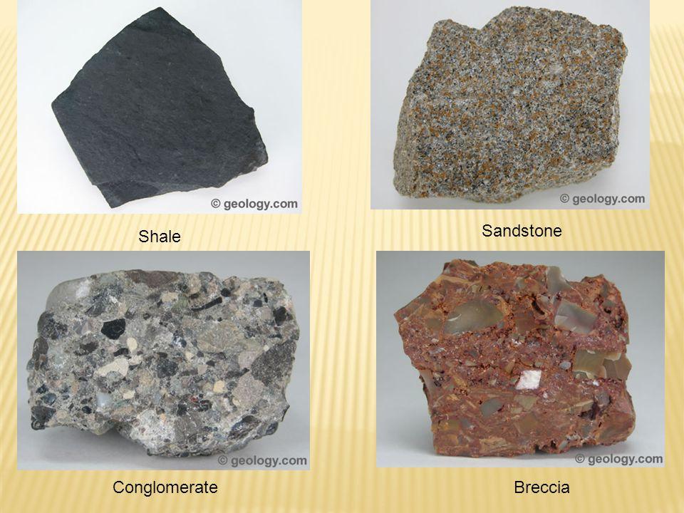 Conglomerate Sandstone Shale Breccia