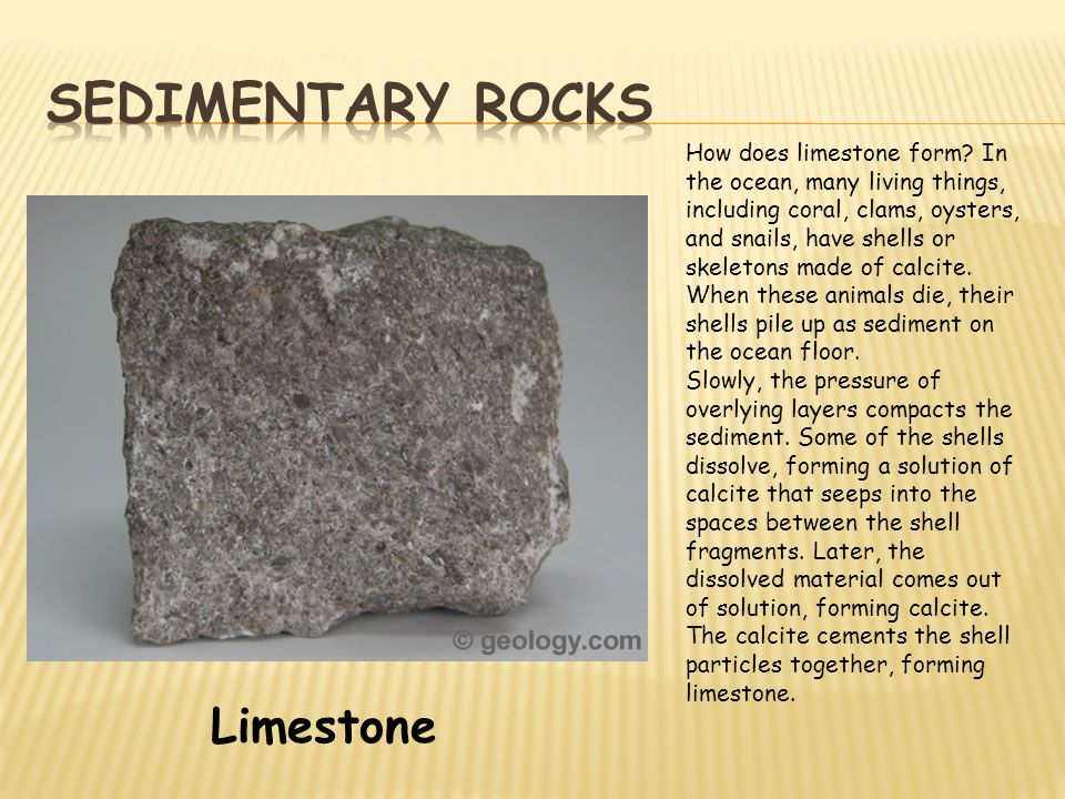 Limestone How does limestone form? In the ocean, many living things, including coral, clams, oysters, and snails, have shells or skeletons made of cal